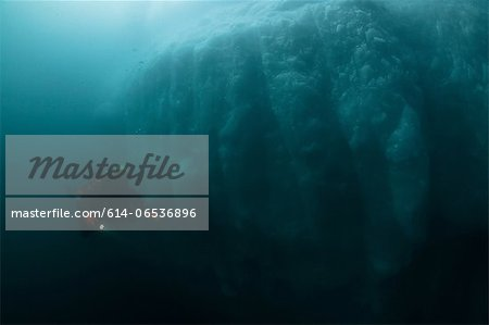Man scuba diving by glacier Stock Photo - Premium Royalty-Free, Image code: 614-06536896