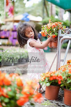Girl holding potted plant in nursery Stock Photo - Premium Royalty-Free, Image code: 614-06623935