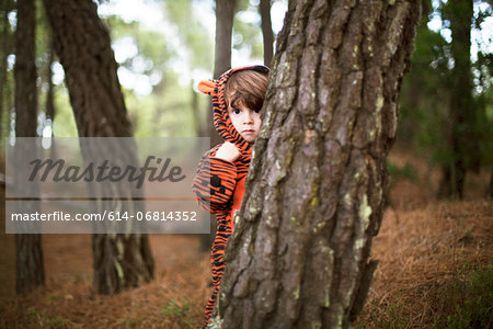 Male toddler wearing tiger suit hiding behind tree Stock Photo - Premium Royalty-Free, Image code: 614-06814352