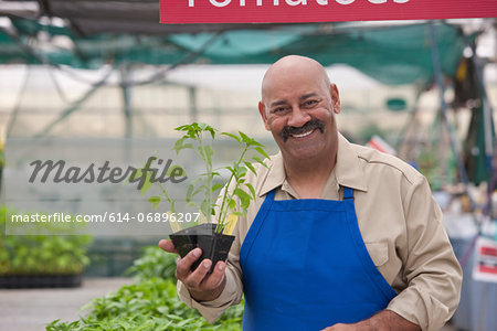 Mature man holding pot plant in garden centre, smiling Stock Photo - Premium Royalty-Free, Image code: 614-06896207
