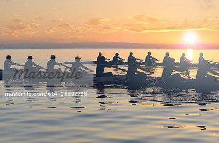 Twelve people rowing at sunset Stock Photo - Premium Royalty-Free, Image code: 614-06897798