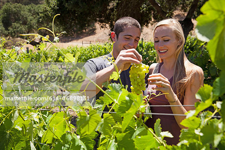 Young couple in vineyard, man holding white grapes Stock Photo - Premium Royalty-Free, Image code: 614-06898131