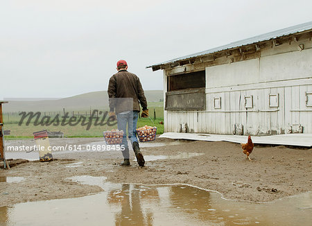 Farmer carrying two baskets of eggs Stock Photo - Premium Royalty-Free, Image code: 614-06898455