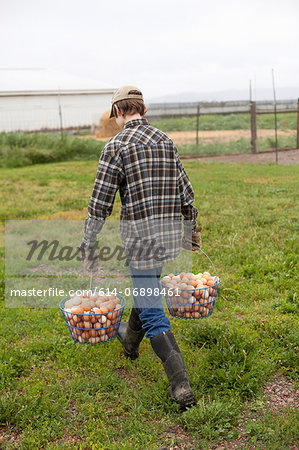 Boy carrying two baskets of eggs Stock Photo - Premium Royalty-Free, Image code: 614-06898461