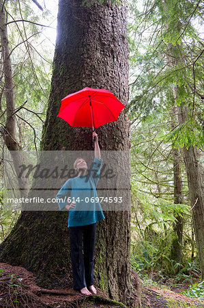Mature woman holding red umbrella in forest Stock Photo - Premium Royalty-Free, Image code: 614-06974593