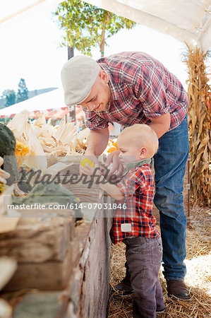 Young father and son looking at squashes Stock Photo - Premium Royalty-Free, Image code: 614-07031846