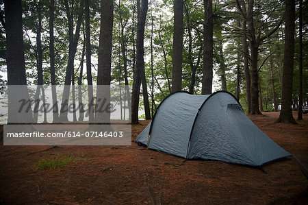 Lone tent in clearing, Bath, Maine, USA Stock Photo - Premium Royalty-Free, Image code: 614-07146403