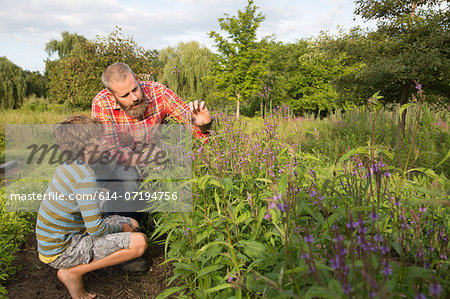 Mature man and son looking at plants on herb farm Stock Photo - Premium Royalty-Free, Image code: 614-07194756