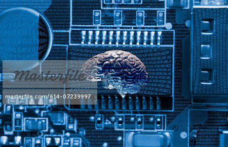 Studio shot of brain and data technology Stock Photo - Premium Royalty-Free, Image code: 614-07239997