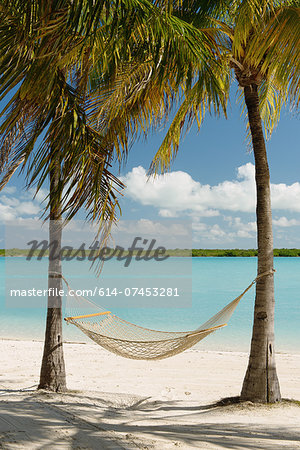 Hammock between palm trees, Providenciales, Turks and Caicos Islands, Caribbean Stock Photo - Premium Royalty-Free, Image code: 614-07453281