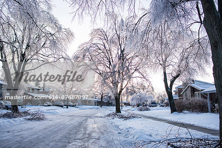 Ice storm, Toronto, Ontario, Canada Stock Photo - Premium Royalty-Free, Image code: 614-07487097