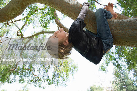 Upside down boy wrapped around tree branch Stock Photo - Premium Royalty-Free, Image code: 614-07587697