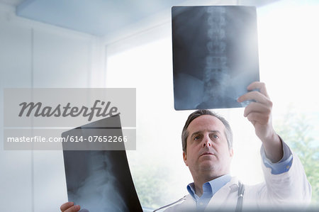 Doctor studying x-rays Stock Photo - Premium Royalty-Free, Image code: 614-07652266