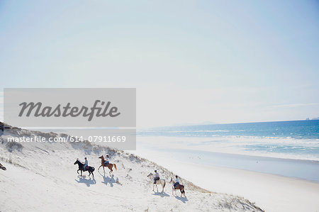 Horse riding, Pakiri Beach, Auckland, New Zealand Stock Photo - Premium Royalty-Free, Image code: 614-07911669
