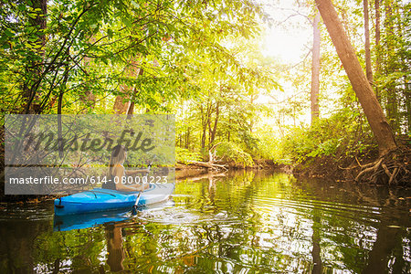 Young woman kayaking on forest river, Cary, North Carolina, USA Stock Photo - Premium Royalty-Free, Image code: 614-08000223