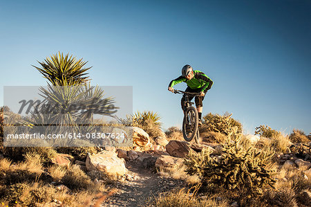 Mountain biker, Las Vegas, Nevada, USA Stock Photo - Premium Royalty-Free, Image code: 614-08307624