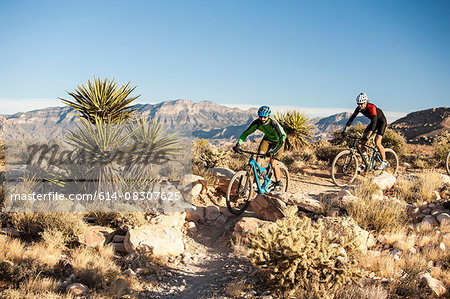 Mountain bikers, Las Vegas, Nevada, USA Stock Photo - Premium Royalty-Free, Image code: 614-08307625