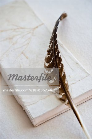 Books feather an stones Stock Photo - Premium Royalty-Free, Image code: 618-03573461