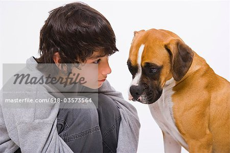 Boy looking at boxer dog Stock Photo - Premium Royalty-Free, Image code: 618-03573564
