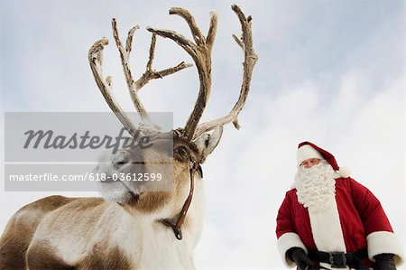 Santa Claus standing with his reindeer Stock Photo - Premium Royalty-Free, Image code: 618-03612599