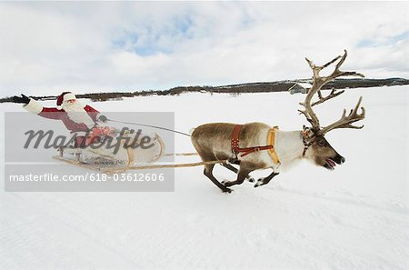A reindeer pulling Santa Claus and his sleigh of presents through the snow Stock Photo - Premium Royalty-Free, Image code: 618-03612606