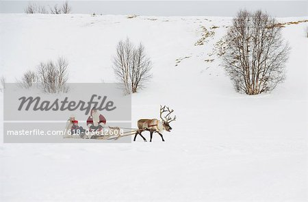 A mother and child having a sleigh ride with Santa Claus and his reindeer Stock Photo - Premium Royalty-Free, Image code: 618-03612608