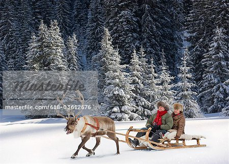 A reindeer pulling a senior couple on a sleigh Stock Photo - Premium Royalty-Free, Image code: 618-03612676