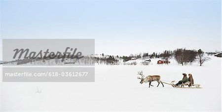 A reindeer pulling a senior couple on a sleigh Stock Photo - Premium Royalty-Free, Image code: 618-03612677