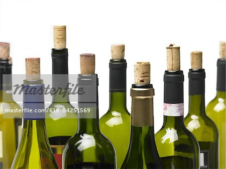 Wine bottles isolated Stock Photo - Premium Royalty-Free, Image code: 618-04251569
