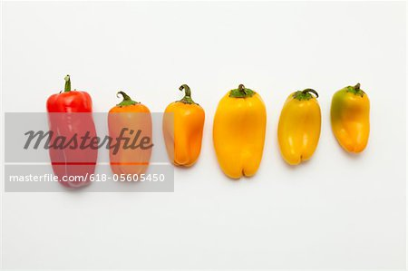Sweet chilli peppers in a row Stock Photo - Premium Royalty-Free, Image code: 618-05605450
