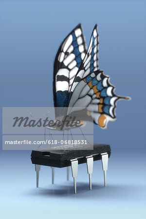 Butterfly standing on a six-legged computer chip Stock Photo - Premium Royalty-Free, Image code: 618-06818531