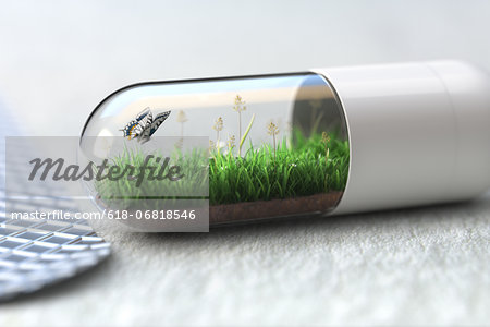 Medicine capsule with greenfield and butterfly Stock Photo - Premium Royalty-Free, Image code: 618-06818546