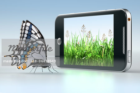 Butterfly in front of smartphone displaying grass Stock Photo - Premium Royalty-Free, Image code: 618-06818548