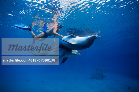 Child interacting with dolphin. Stock Photo - Premium Royalty-Free, Image code: 618-07398138