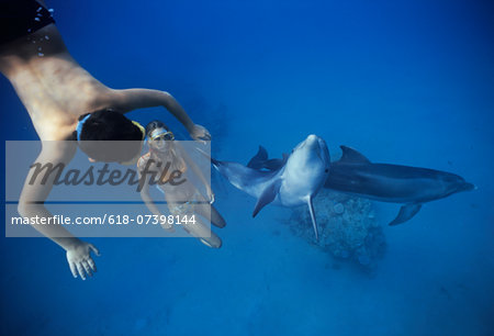 Child interacting with dolphin. Stock Photo - Premium Royalty-Free, Image code: 618-07398144