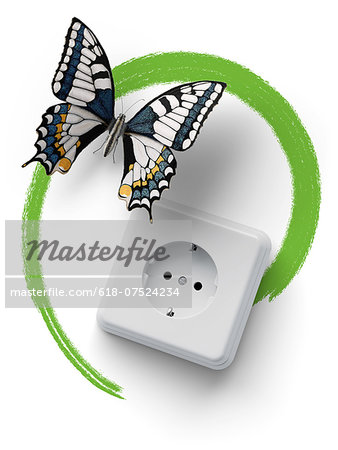 Socket with butterfly and green marker line Stock Photo - Premium Royalty-Free, Image code: 618-07524234