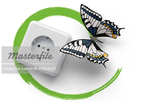 Socket with butterfly and green marker line Stock Photo - Premium Royalty-Free, Image code: 618-07524237