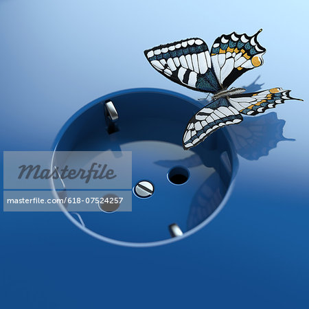 Blue socket with butterfly Stock Photo - Premium Royalty-Free, Image code: 618-07524257
