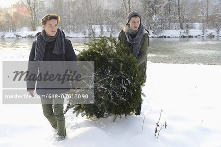 Teenage boys carrying Christmas tree Stock Photo - Premium Royalty-Free, Image code: 618-07612090