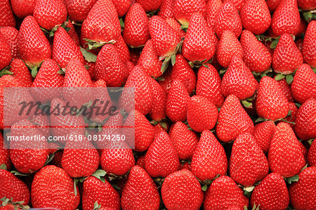 Strawberry Stock Photo - Premium Royalty-Free, Image code: 618-08174250