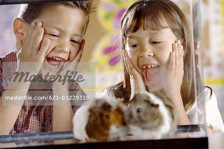 Students with Hamsters Stock Photo - Premium Royalty-Free, Image code: 621-01229319