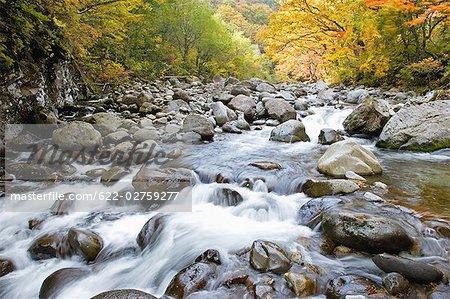 River Passing Through Nakatsugawa Ravine, Japan