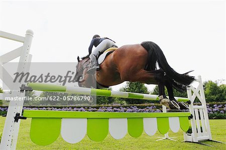 Horse Rider Jumping Hurdle Stock Photo - Premium Royalty-Free, Image code: 622-05786790