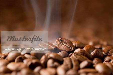 Hot Coffee Bean Stock Photo - Premium Royalty-Free, Image code: 622-06009972