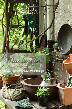 Plants and gardening tools Stock Photo - Premium Royalty-Free, Image code: 622-06548688