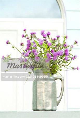 Thistle flowers in a vase Stock Photo - Premium Royalty-Free, Image code: 622-06549000