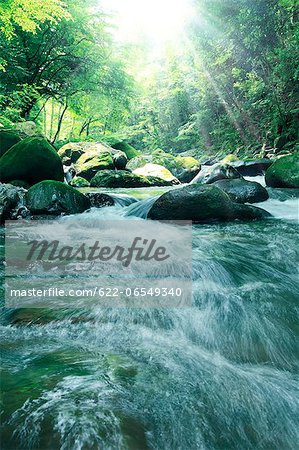 Water stream Stock Photo - Premium Royalty-Free, Image code: 622-06549340