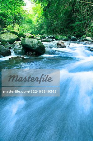 Water stream Stock Photo - Premium Royalty-Free, Image code: 622-06549342