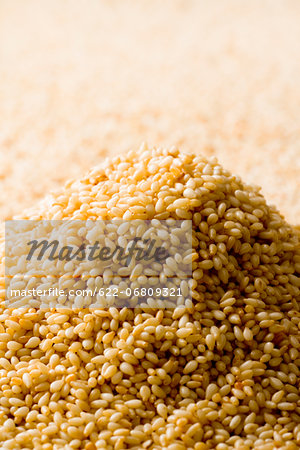 Roasted sesame seeds Stock Photo - Premium Royalty-Free, Image code: 622-06809321