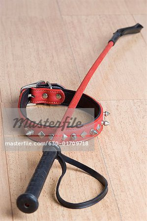 Close-up of a dog collar and riding crop on a hardwood floor Stock Photo - Premium Royalty-Free, Image code: 630-01709718